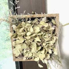 バンクシア/アンティーク紫陽花/ドライフラワーのある暮らし/雑貨/インテリア/ハンドメイド アンティーク紫陽花を箱詰めにしました 紫…