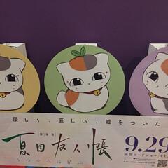 夏目友人帳/映画 昨日 娘と観に行って来ました😊 ニャンコ…
