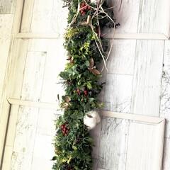 ドライフラワーのある暮らし/クリスマスガーランド/ミニスワッグ/ワークショップ/森の香り 先日初めてのワークショップに行ってきまし…