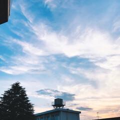 夕方の空 今日は 昨日のような 猛暑では なかった…