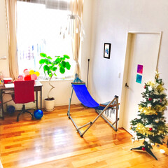 クリスマスツリー/おでかけ/旅行/グルメ/フード/インテリア/... クリスマスツリーを 飾りました🎄✨ 7歳…