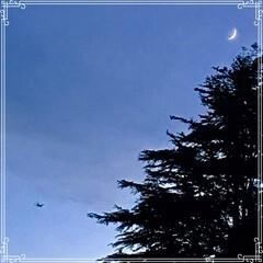 朝ごはん/夕方の空/三日月と 飛行機/三日月/フード/おうちごはん 今日の 朝ごはん   ☆もち麦入りご飯 …(4枚目)
