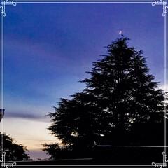 朝ごはん/夕方の空/三日月と 飛行機/三日月/フード/おうちごはん 今日の 朝ごはん   ☆もち麦入りご飯 …(5枚目)