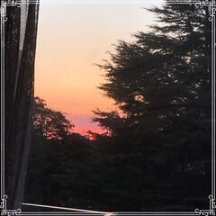 お家ごはん/朝ごはん/沈む夕陽/夕焼け/フード/おうちごはんクラブ/... こんにちは! 今日の 朝ごはんです^ -…(6枚目)