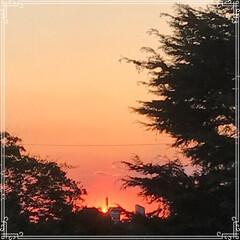 お家ごはん/朝ごはん/沈む夕陽/夕焼け/フード/おうちごはんクラブ/... こんにちは! 今日の 朝ごはんです^ -…(5枚目)
