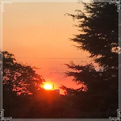 お家ごはん/朝ごはん/沈む夕陽/夕焼け/フード/おうちごはんクラブ/... こんにちは! 今日の 朝ごはんです^ -…(4枚目)
