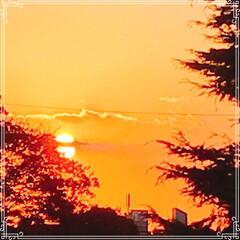 お家ごはん/朝ごはん/沈む夕陽/夕焼け/フード/おうちごはんクラブ/... こんにちは! 今日の 朝ごはんです^ -…(2枚目)