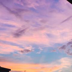 夕焼け/空 PM 7:00 今日も 夕焼けが 綺麗!…(4枚目)