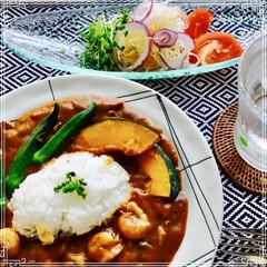 カレーライス/お家ご飯/朝ご飯/フード 朝ご飯は シュリンプカレーと サラダ で…