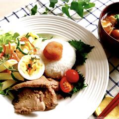 朝ごはん/フード/おうちごはん 今日の 朝ごはん 辛子明太子のせご飯 …