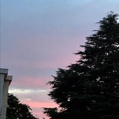 夕焼/空 19:00 の 空