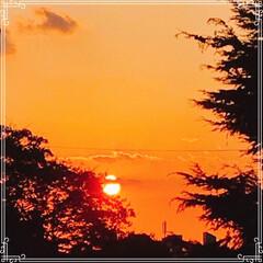 お家ごはん/朝ごはん/沈む夕陽/夕焼け/フード/おうちごはんクラブ/... こんにちは! 今日の 朝ごはんです^ -…(3枚目)
