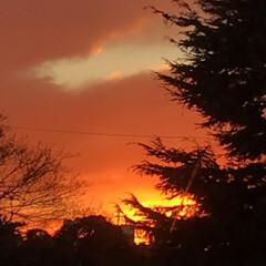 移変り/夕暮れの空/空 真っ赤な 火事のような 夕暮れの空 5時…