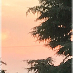 翠の癒し空間/夕暮れの 空 PM 19:00 の空 リビングからの …
