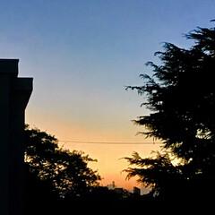 夕焼け pm 5:40   の 空 リビングから…