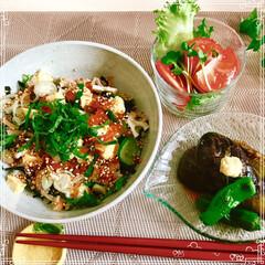 晩ご飯/丼/フード/おうちごはん 暑い日の サッパリ野菜入り ちらし風丼 …
