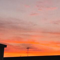 夕焼け/空 PM 7:00 今日も 夕焼けが 綺麗!…