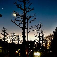 夕暮れの景色/風景 夕暮れの 景色  駅まで 7、8 分の …