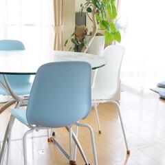 チェアー/IKEA IKEAのブルーのチェアー色が大好き 見…