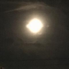 中秋の名月 中秋の名月 🌕 雲で霞んでました。(2枚目)