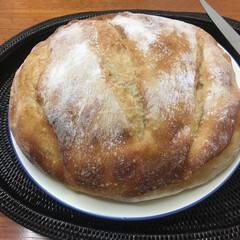 パン/フード/グルメ ブール 💕 こちらも ふわふわで 美味し…