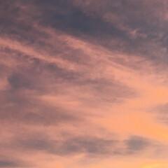 夕焼け 夕焼け 🌆  10分から15分の出来事 …(3枚目)