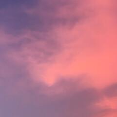 夕焼け/空 夏空と夕焼け (3枚目)