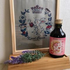 お土産/お酒/おでかけ 娘のお土産 2  紅茶好きな私に 桃の紅…