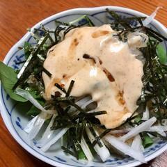 明太子サラダ/おうちごはん ダイコンの明太子サラダ🥗  明太子ドレッ…