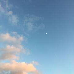 夕焼け/空 夏空と夕焼け