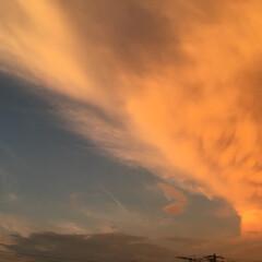 夕焼け/雲 ラピュタに出てくる 龍の巣🐉のような雲 …