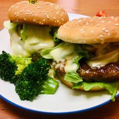 ハンバーガー/LIMIAごはんクラブ/わたしのごはん/ハンドメイド/おうちごはんクラブ/グルメ/... 今日のランチ  チーズバーガーとテリヤキ…