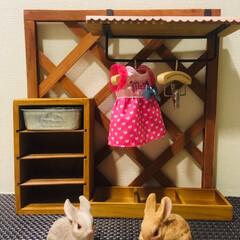 クローゼット/100均/ダイソー/セリア/インテリア/DIY/... 姪っ子ちゃんに頼まれて お人形さんのクロ…