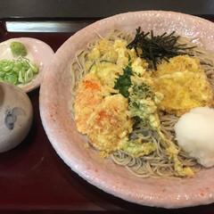 蕎麦/ランチ/おでかけ 野菜おろし蕎麦 💕