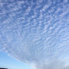夕焼け/雲 ウロコ雲と夕焼け
