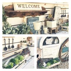 車輪/リメ缶/白×茶/ルーバー扉/フレンチ/ナチュラル/... ガーデン進化中♡ 植物を育てるのが苦手な…