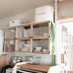 ナチュラル/食器棚/DIY/100均/セリア/キッチン/... 手作りした食器棚! お気に入りになりまし…