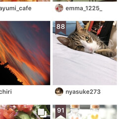 猫/コメント大歓迎/猫派/フォロー大歓迎/LIMIAペット同好会/にゃんこ同好会 ランキングに入ってましたぁ~。 今回は8…