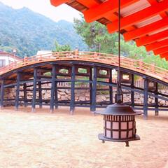 厳島神社/おでかけワンショット/おでかけ/旅行/風景 安芸の宮島😊 厳島神社⛩