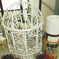 リサイクルショップ/鳥かご/リメイク/錆び加工/green🌿のある生活 リサイクルショップで見つけてきたー(。…