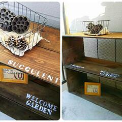 林檎箱/多肉棚/初DIY/ステンシル/ウォールナッツ/チキンネット/...  従姉から譲り受けた林檎箱。 仕事と家事…