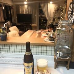 キッチンからの眺め/キッチン/ビール/チワワ 賞味期限近いお買い得にゲットした瓶ビール…(1枚目)