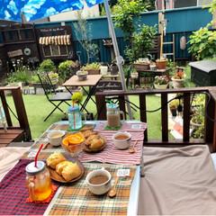 チワワ/人工芝/ウッドデッキ/ランチ/おうちごはん/ガーデニング/... お天気が良かったのでお庭でランチしました…