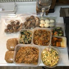 チワワ/チワワのコマ/夜ご飯/おうちごはん/つくおき/キッチン雑貨 子供達がお休みなので食料の減りが早いです…