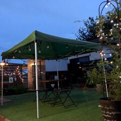 ナチュラルガーデン/手作りのお庭/イルミネーション/人工芝/タープテント/ガーデニング お仕事帰ってきてお庭の緑たちにお水をあげ…