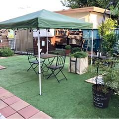 お庭作り/人工芝/ストリングライト/タープテント/ガーデニング/手作りのお庭 昨日ずっと気になっていたお庭の花壇の雑草…