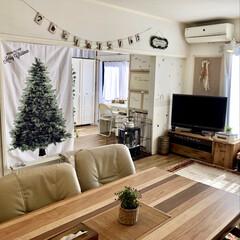 クッションフロア/セルフリノベーション/和室から洋室/クリスマスツリータペストリー/クリスマス おはようございます♡ 毎日寒いですね。 …