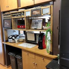 ショーケース/パタパタ扉/DIY/ディアウォール/キッチン/収納 キッチンカウンターです(*´-`)♡  …