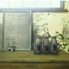 グリーン/DIY/インテリア/フラワーベース/花瓶 牛乳瓶リメイク☆飲み終わった牛乳瓶を洗っ…(1枚目)