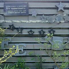 庭/ガーデン/DIY/ガーランド/星型/ジョウロ/... 庭にある山善さんのアルミガーデンフェンス…